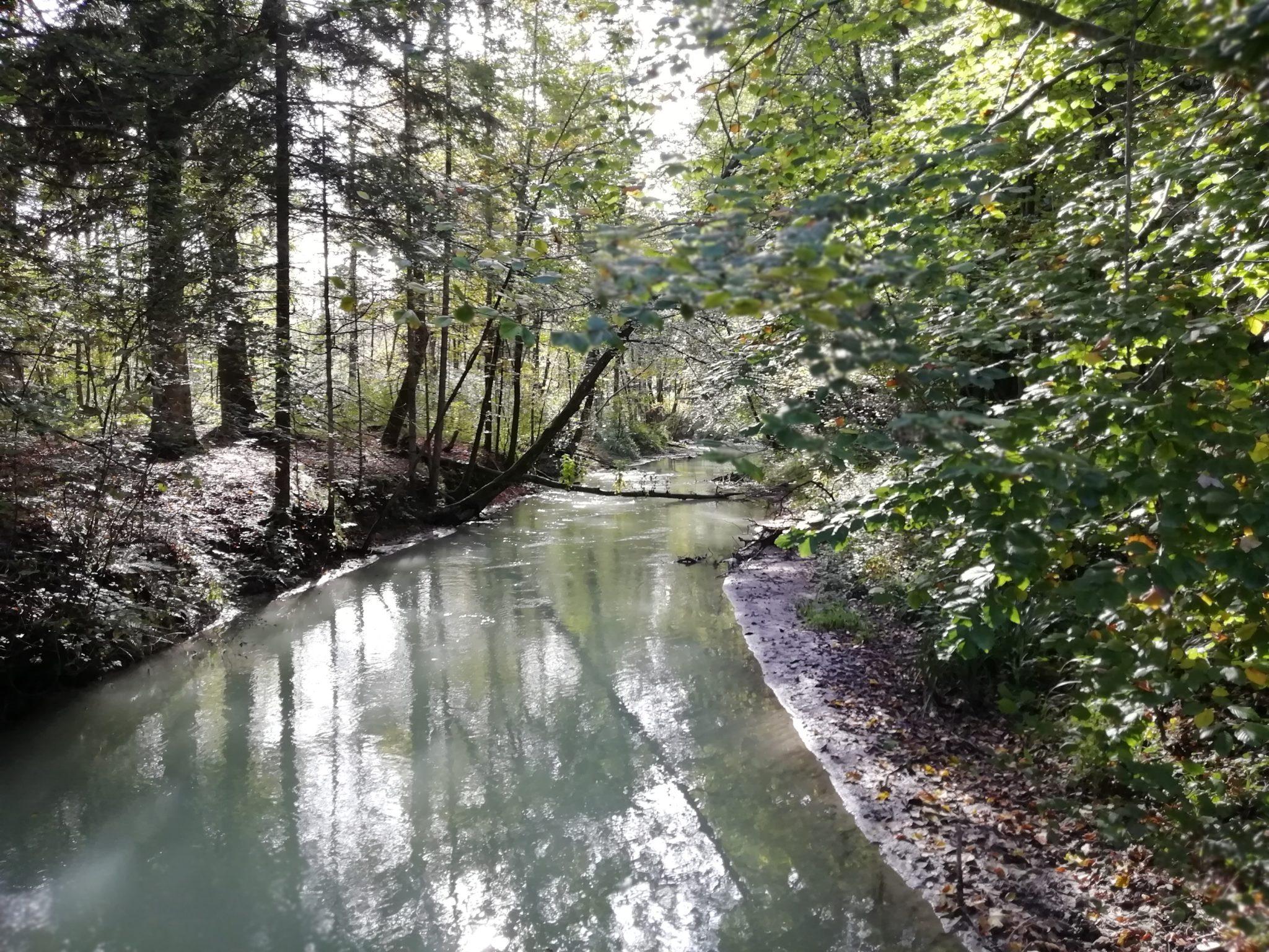 Klima- und Umweltschutz für Freilassing