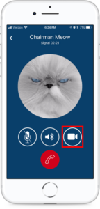 Der Videobutton auf einem iPhone